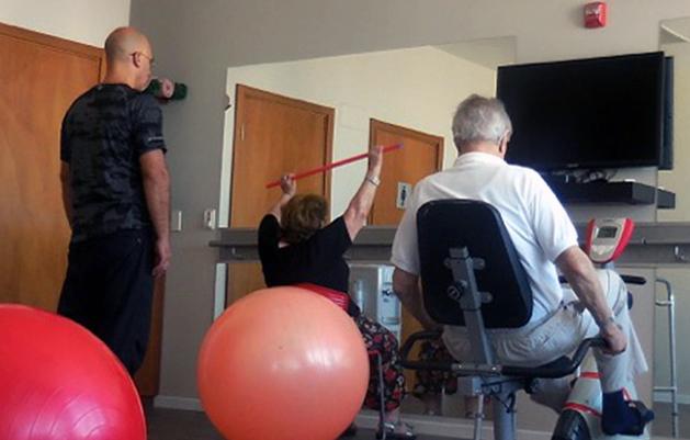 fisioterapia_web